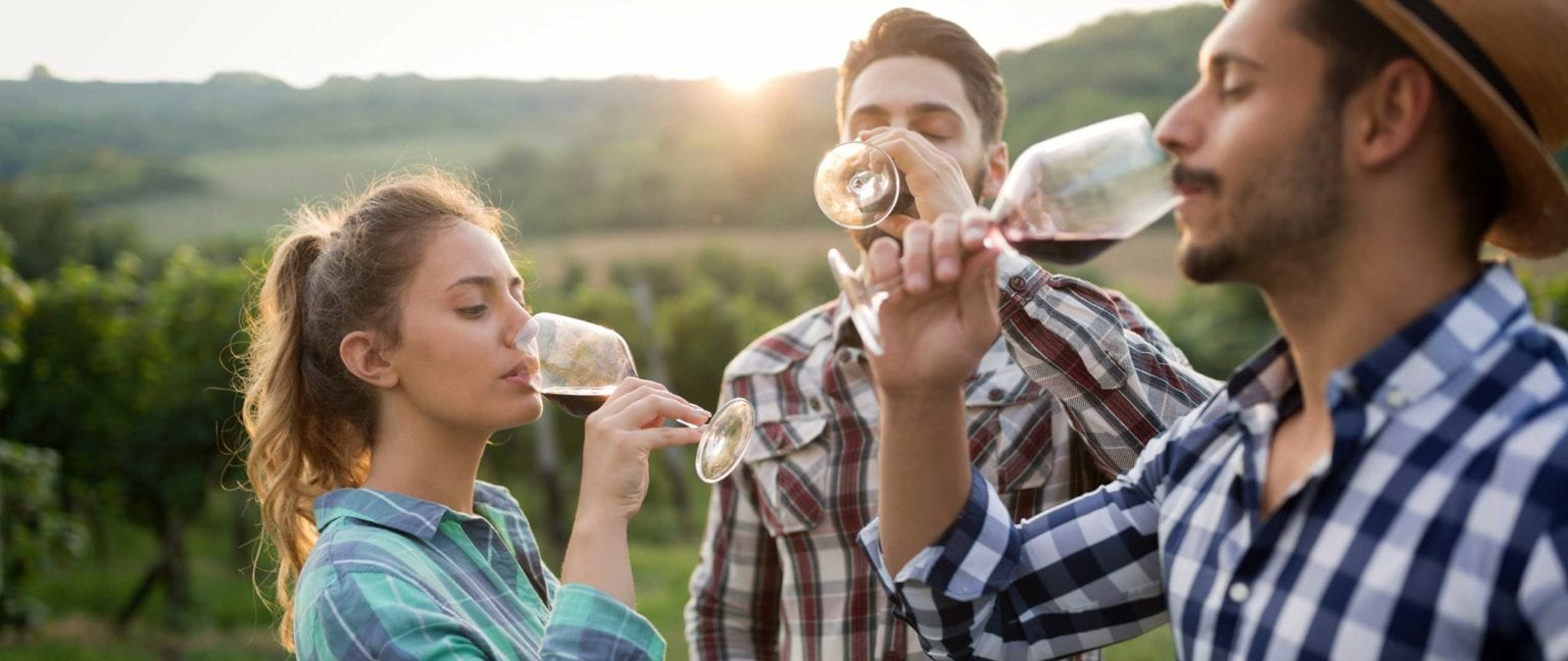 Winery Marketing for DTC Sales