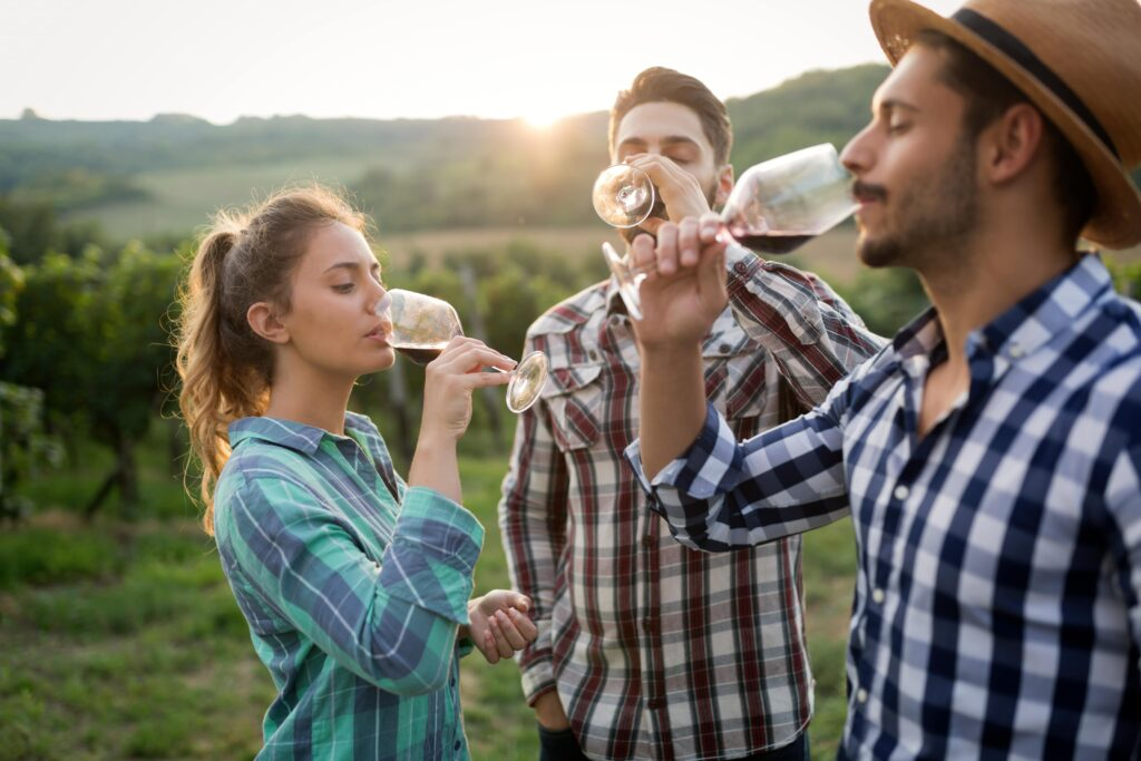 winery suppliers look for