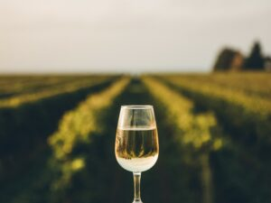 Craft Your Winery's Story
